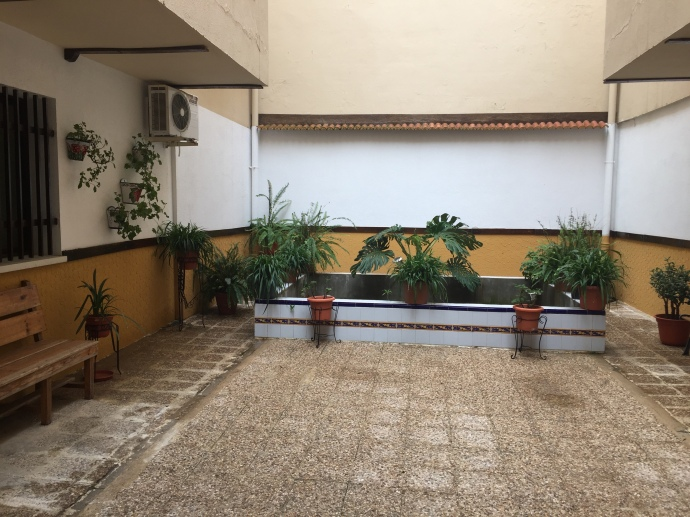 Patio Interior 2